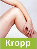 Prodpuff_kropp
